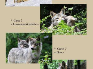 Cartes postales Le Klan du Loup