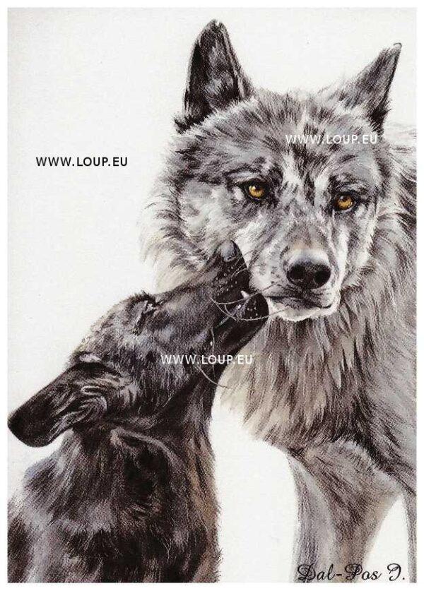 Carte Le Klan du Loup