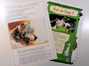 Plaquettes d'informations sur le Loup